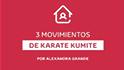 Alexandra Grande - 3 ejercicios de karate